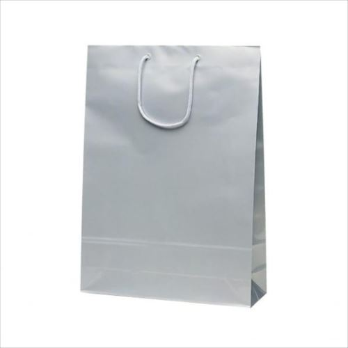 エクセルバッグ 手提袋 330×100×450mm 50枚 シルバー 1102  【abt-1423740】【APIs】