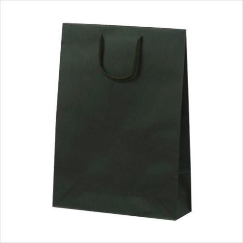T-8 カラークラフト 紙袋 330×100×450mm 100枚 グリーン 1034  【abt-1423789】【APIs】