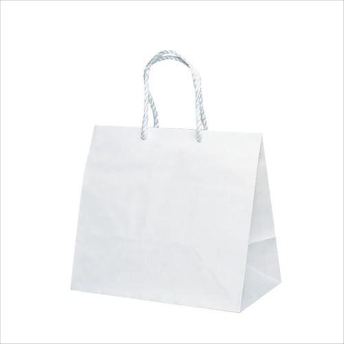 グレートバッグ 紙袋 400×250×370mm 50枚 No.10 1410  【abt-1423814】【APIs】
