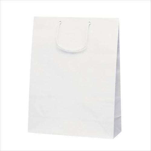 グランドバッグ 手提袋 380×145×500mm 50枚 ホワイト 1142  【abt-1423744】【APIs】