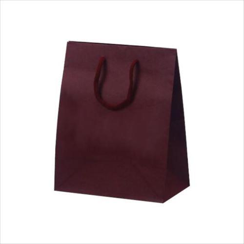 T-2 カラークラフト 紙袋 200×120×250mm 100枚 ワイン 1024  【abt-1423776】【APIs】