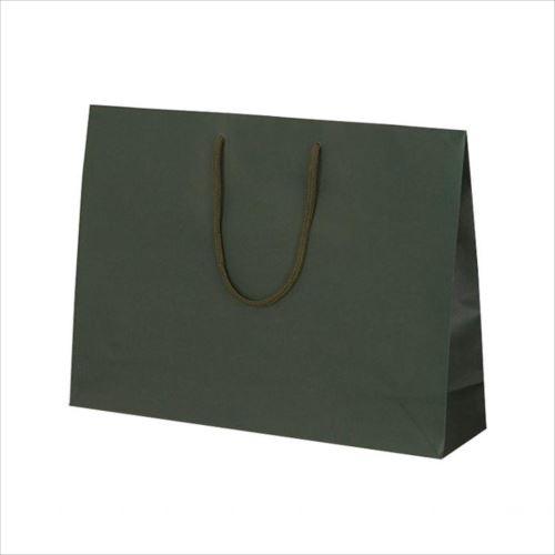 T-Y カラークラフト 紙袋 430×110×320mm 100枚 グリーン 1042  【abt-1423794】【APIs】