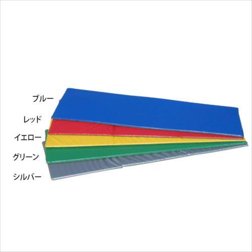 ノンスリップフィットネスマット 60×150×2cm F-48  【abt-1507908】【APIs】