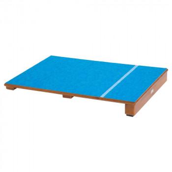 踏切板 (屋内用)カーペット J114  【abt-1549676】【APIs】