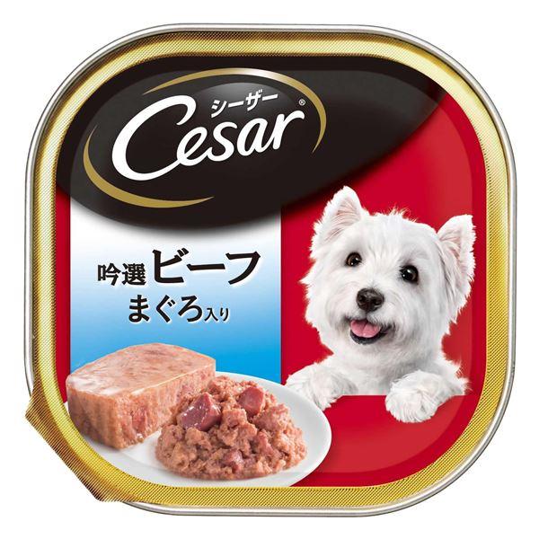(まとめ)シーザー 吟選ビーフ まぐろ入り 100g【×96セット】【ペット用品・犬用フード】
