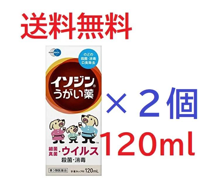 第3類医薬品 イソジンうがい薬 未使用品 チープ 2個セット4987087041828-2 120mL