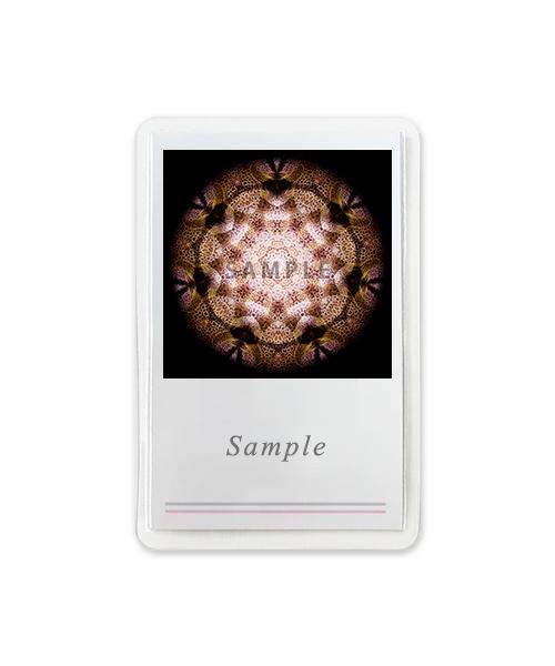 スネーカー 名刺サイズカード