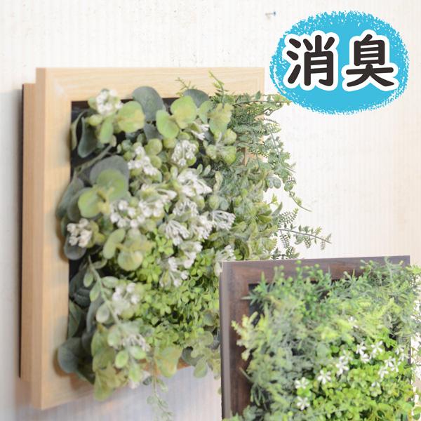 置いておくだけで消臭、防汚、抗菌の効果が期待できるおしゃれな観葉植物のフェイクグリーン。ウッド調のフレームにグリーンをたくさん詰め込んだおしゃれなフェイクグリーンです。 置くだけで消臭・細菌やカビの増殖を抑えます『CT触媒フェイクグリーン プレリエL』(消臭/フェイクグリーン/壁掛け/壁/ハンギング/観葉植物/フラワー/本物みたい/光触媒より便利/造花/イミテーション/おしゃれ/インテリア/おすすめ)ssp