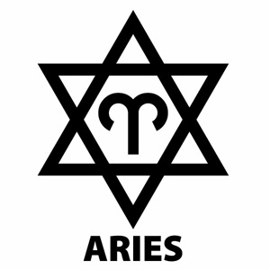 【ARIES(おひつじ座)Ver.09 カッティングステッカー 大判Lサイズ 2枚組 幅約20.5cm×高約27cm】ハンドメイド 牡羊座 星座ステッカー 車 ウインドウステッカー。