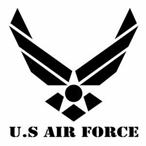 ウインドウ用ディスプレイに インテリアに U.S. AIRFORCE a ver.05 特価 贈物 米国空軍モチーフ カッティングステッカー アーミー デカール 2枚組 ハンドメイド アメリカ空軍マーク 大判Lサイズ 幅約29cm×高約29cm