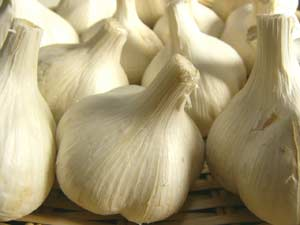 Organic garlic 1 (S-l) ★ organic JAS (organic and additive-free) ★ Hokkaido