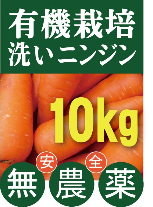 有機にんじん 供え ニンジン 洗い 10kg 有機JAS 感謝価格 北海道産 無添加 有機栽培
