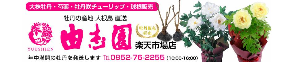 由志園 楽天市場店:牡丹の生産地 島根県の大根島から配送しております。