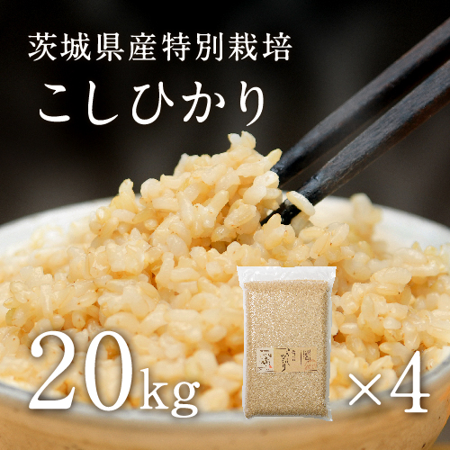 【30年産】【新米】茨城県産 特別栽培玄米「コシヒカリ」(20kg)