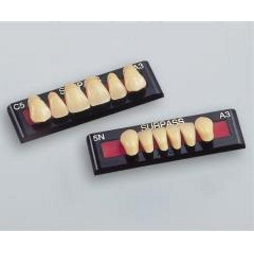 【送料無料】 硬質レジン前歯 サーパス前歯 アンテリアパレット 6色=A2、A3、A3.5、A4、B3、C3 1パレット36個入り GC