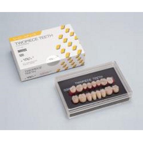 【送料無料】 咬合面置換型レジン臼歯 ツーピースティース 8揃上下顎 16歯 1組 1組=上下顎16歯 GC