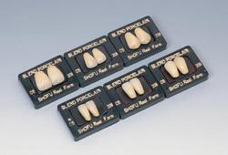 【送料無料】 医療機器 ブレンド陶歯 上顎 卵円型(O) 208 6 1箱10組(60歯) 松風