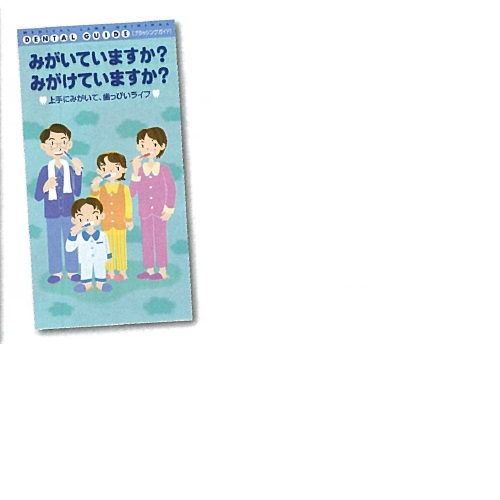 【送料無料】 ブラッシングガイド 名入れ無 H210×W110mm 200冊 メディカルランド
