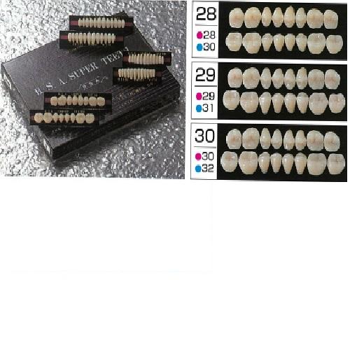【送料無料】 スーパー陶歯 臼歯 M29 上顎 色調4 8揃×16組