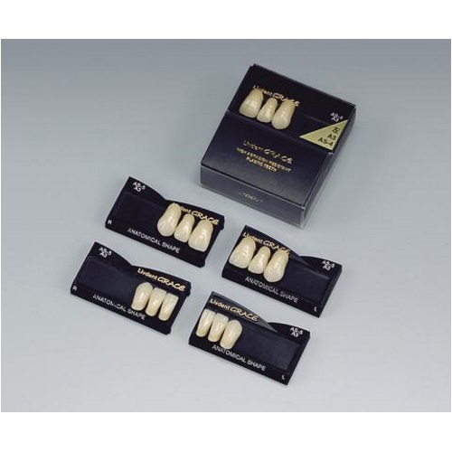 天然歯の層構造を忠実に再現 買取 医療機器 リブデント グレース 前歯 左下顎 A3 1函=中切歯~犬歯3揃1個 AS-3 NEW GC 上下左右側別