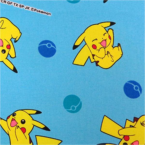 Pocket Monster Pikachu Pokemon Blue