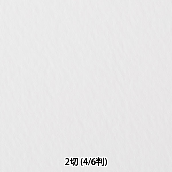 店内全品ポイント5倍 ×2 好評受付中 160円以上のご購入で送料無料 画材 ホワイトワトソン 超特厚口 6判 4 muse 1枚入り 2切 数量は多 ミューズ