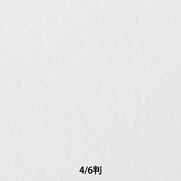 大好評です 定番の高級水彩紙ホワイトワトソン 画材 ホワイトワトソン 5☆大好評 厚口 4 1枚入り muse 6判 ミューズ