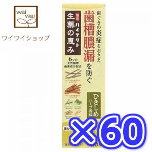【送料無料】ハイテクト生薬の恵み ひきしめハーブ香味 90gX60個 はみがきこ ライオン