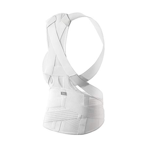 送料無料 MTG Style BX Plus 姿勢補正ベルト 全品最安値に挑戦 L 猫背 YS-AF02L 背筋 商品 ホワイト 男女兼用