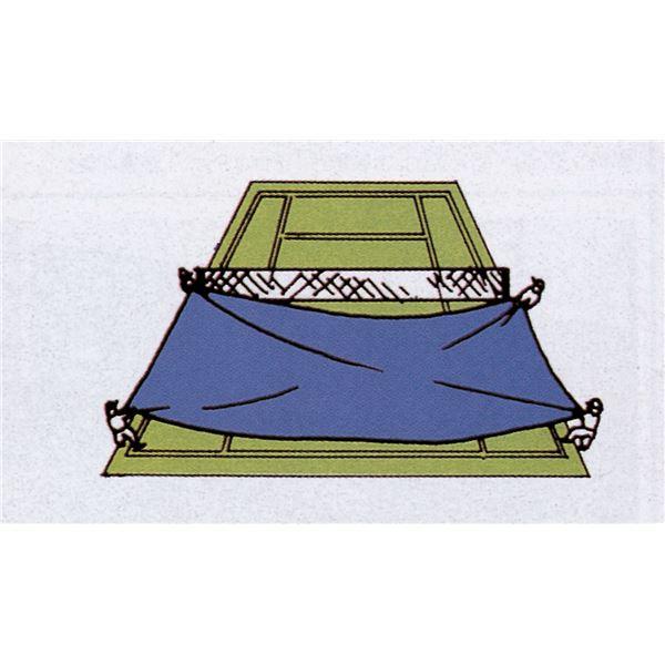 ■ポイント12.5倍■TOEI LIGHT(トーエイライト) 防水用スポーツシート10×10M G1389