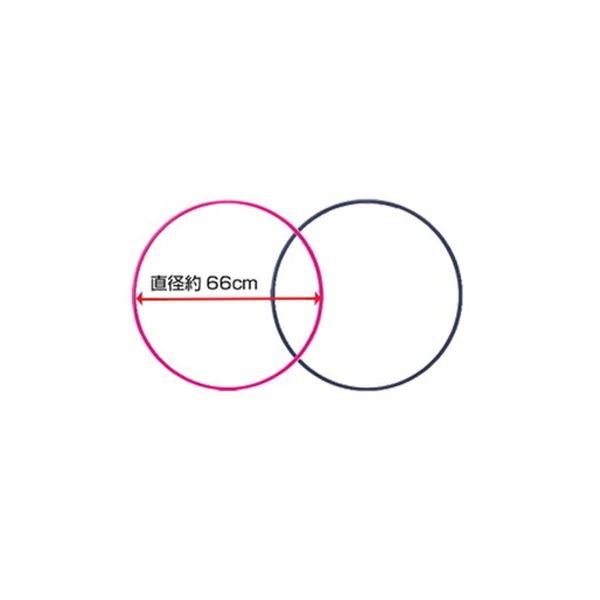 【まとめ買い 24本】スポーツ フラフープ 66cm アソート(ブルー・ピンク各12本)