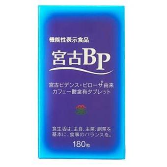 宮古BP 180粒