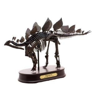恐竜のフィギュア 模型 インテリア 玩具!ステゴサウルス スケルトンモデル FDS604/BR(70104)