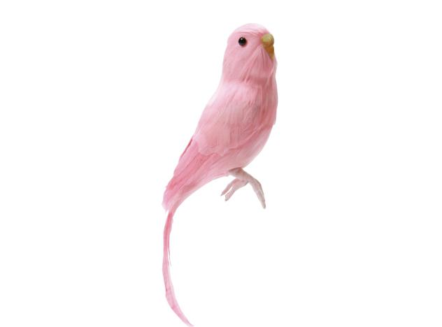 Budgie ご注文で当日配送 Pink 着後レビューで 送料無料 セキセイインコ ピンク PUEBCO Artificial アーティフィシャルバード128078 あす楽対応_東海 Birdsプエブコ