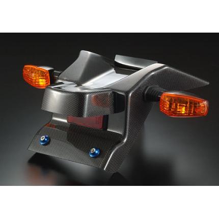 リアフェンダーレスKIT AGRAS(アグラス) SV1000・S