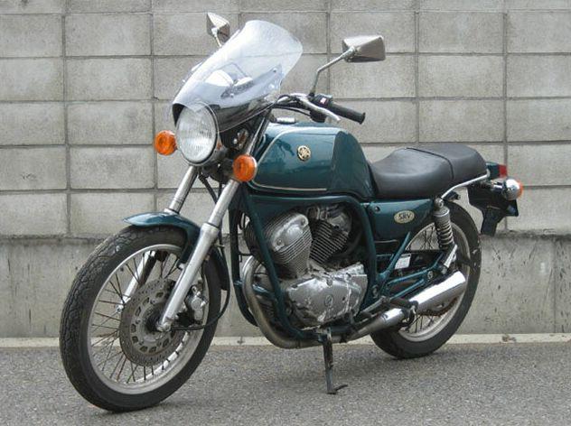 SRV250・S(92~97年) ガイラシールド Mサイズ クリア CHIC DESIGN(シックデザイン)