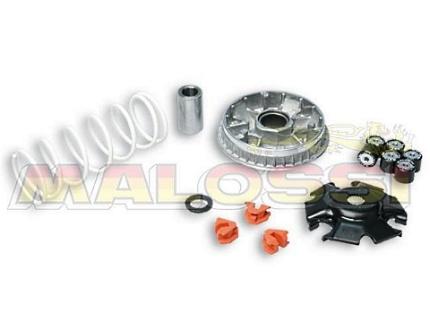 シルバーウイング600(SilverWing) マルチバリエーター MALOSSI(マロッシ)