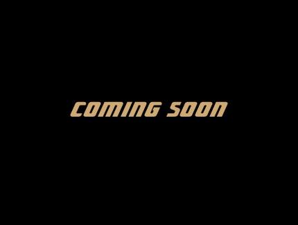 今季一番 SUPER STRIKER TITAN TITAN チタンフルエキゾースト 4-1 STD 真円 110-480 110-480 STRIKER STRIKER(ストライカー) XJR1300(~2002), トーホー:a431b09f --- eraamaderngo.in