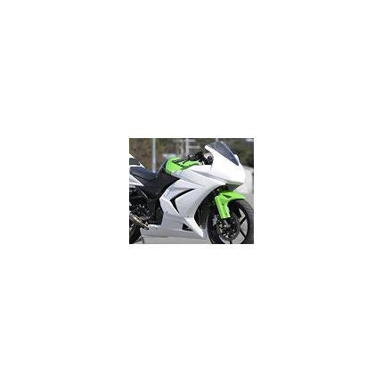 フルカウル&シングルシート レース 白ゲル Ninja250R 08年~ SAITANIYA(才谷屋ファクトリー)