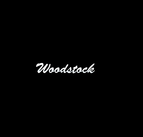 NinjaH2SX/SXSE(18年) ライセンスプレートホルダーシルバー woodstock(ウッドストック)