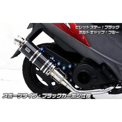 アニバーサリーマフラー スポーツタイプブラックカーボン ウイルズウィン(WirusWin) アドレスV125S(ADDRESS)EBJ-CF4MA