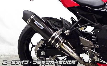 Ninja250SL(ニンジャ250SL) スリップオンマフラー ユーロタイプ ブラックカーボン仕様 ウイルズウィン(WirusWin)