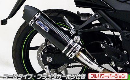 Ninja250R(ニンジャ)JBK-EX250K スリップオンマフラー ユーロタイプ ブラックカーボン(フルパワーバージョン) ウイルズウィン(WirusWin)