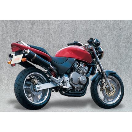 SPEC-A スリップオンマフラーカーボンサイレンサー YAMAMOTO RACING(ヤマモトレーシング) ホーネット250(HORNET)