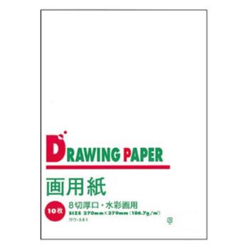 画用紙パックです 文運堂 画用紙パック B判8切(厚口) 水彩画用 10枚入×10袋セット ヨウ-581(605581)