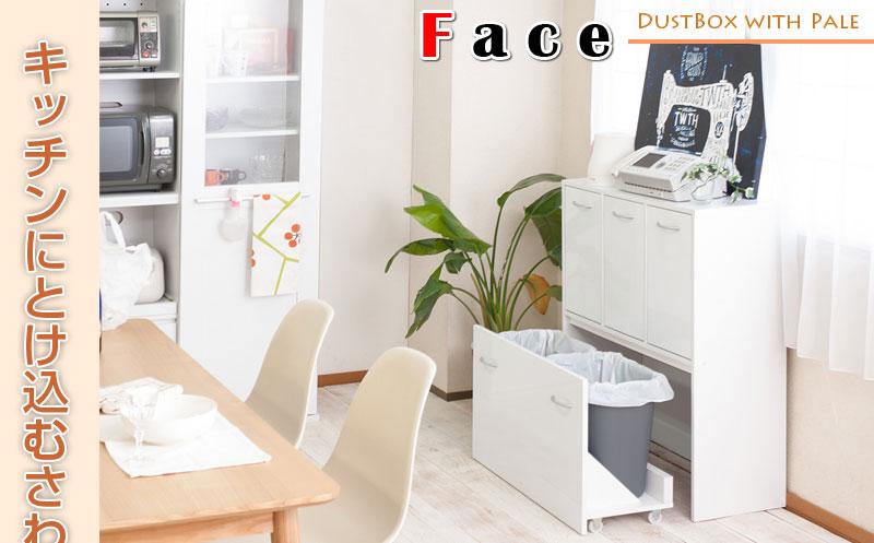 キッチンシリーズface 5分別ダストボックス ホワイト