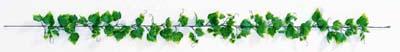 ≪グレープリーフ 年間定番 ガーランド つる 贈答 屋外使用可 ディスプレー≫ フジグレープガーランド つた LEG-0115 プラスチック製 フェイクグリーン